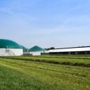 Biogasanlage mit Kuhstall